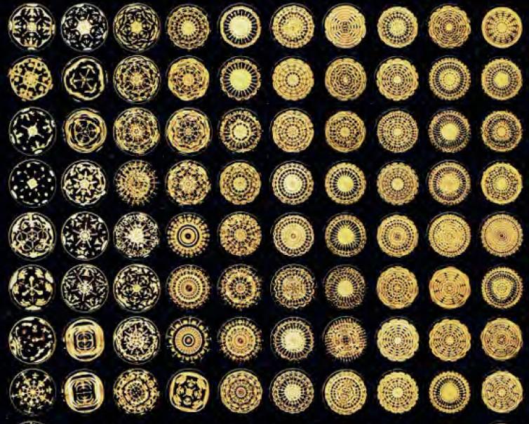 cymatic formes