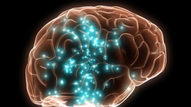 neuroscience-quand-les-emotions-du-systeme-nerveux-deviennent-10753045cierx_2059
