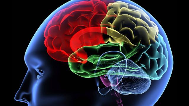 Santé du cerveau