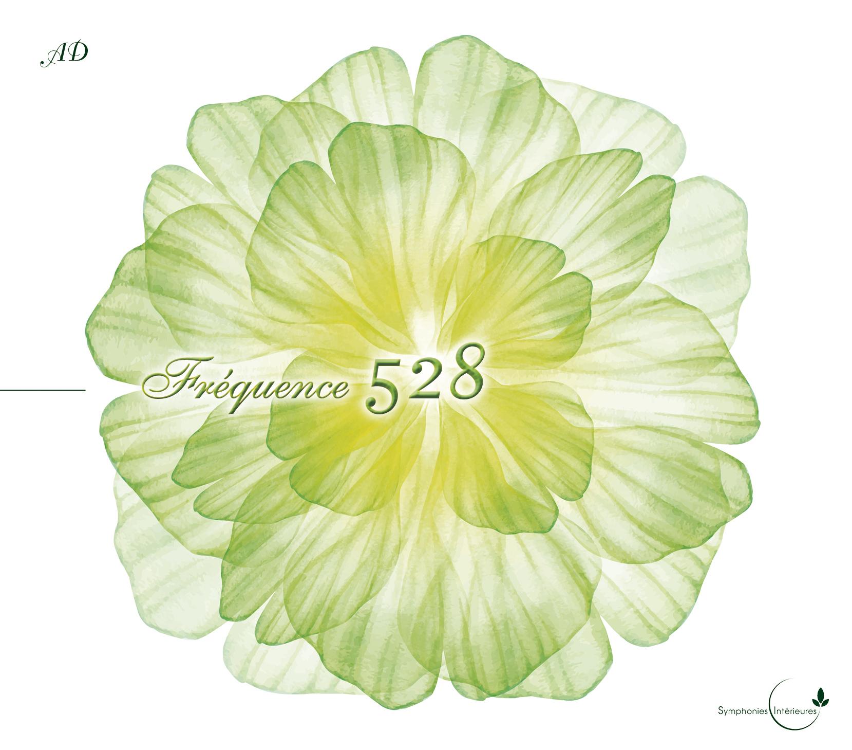 Fréquence 528 (face) - 1