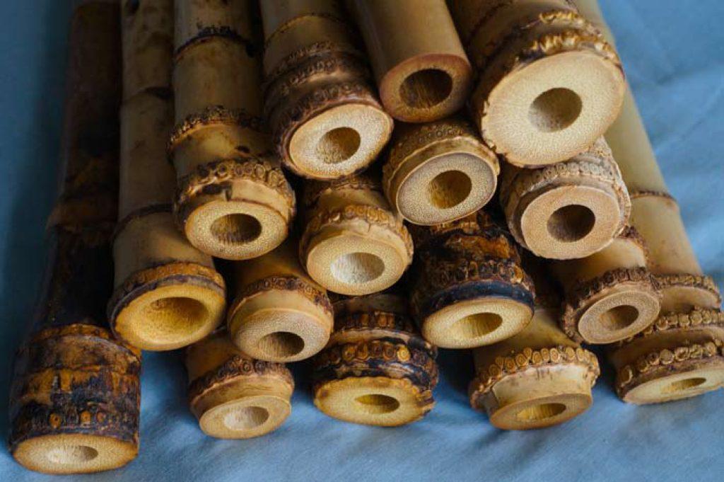 BambousDH2
